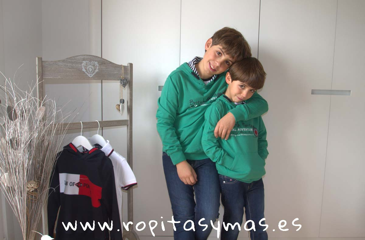 Sudadera verde intenso capucha de LION OF PORCHES